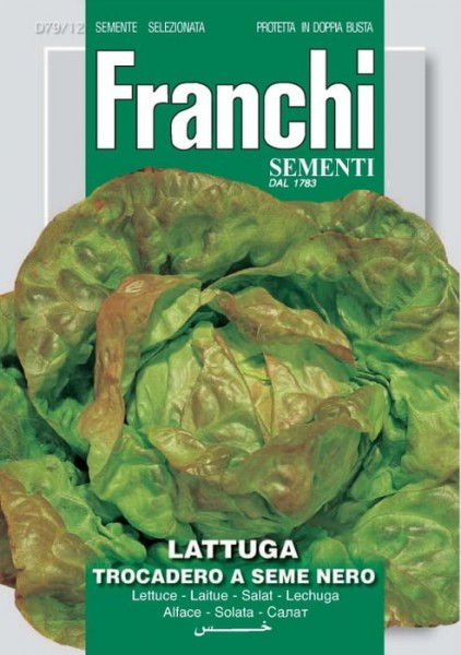 Kopfsalat Trocadero a seme nero