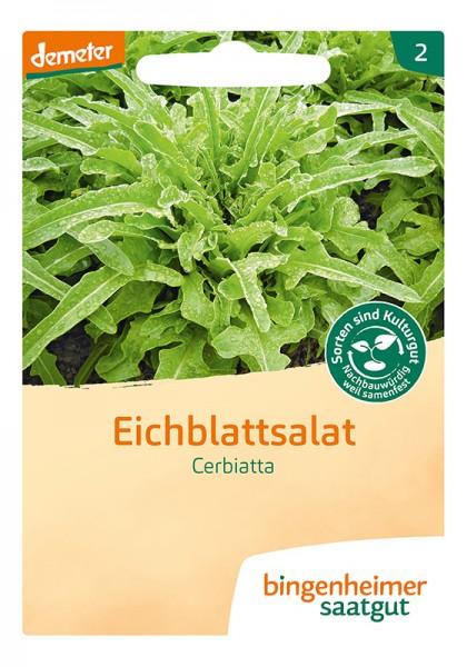 Eichblattsalat Cerbiatta