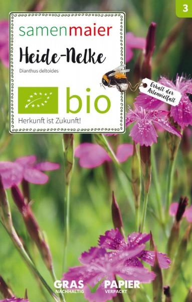 Wildblume Heide-Nelke