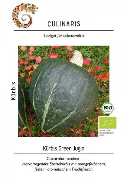 Kürbis Green Jugin