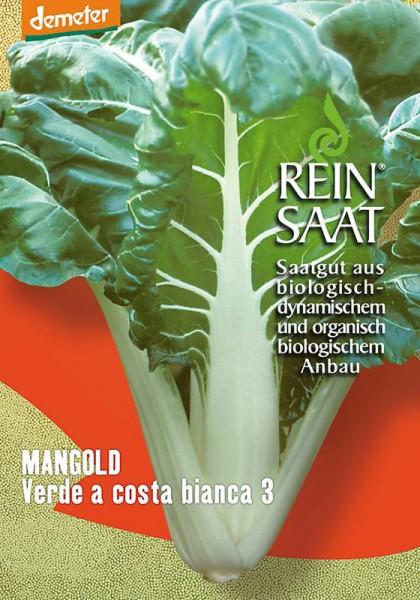Mangold Verde a costa bianca 3
