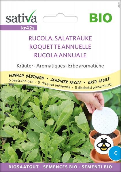 Rucola, Salatrauke - Saatscheiben