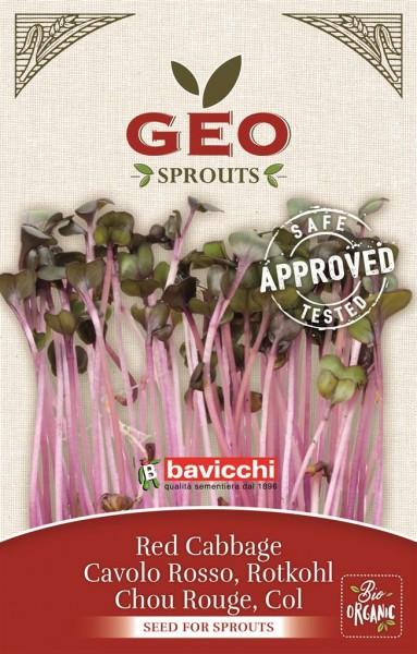 Bio-Keimsprossen Rotkohl Cabbage