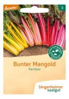 Mangold Rainbow Mischung