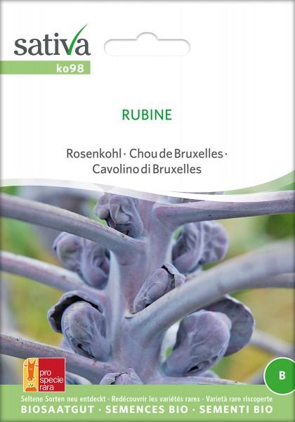 Rosenkohl Rubine