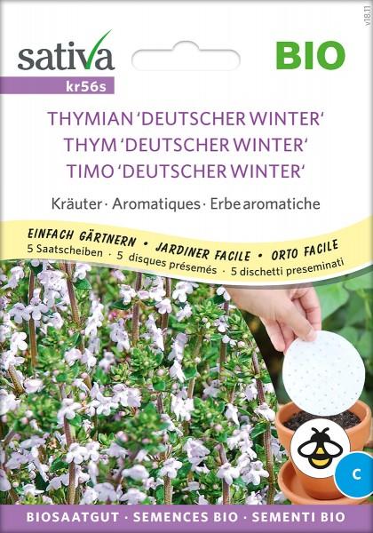Thymian Deutscher Winter - Saatscheiben