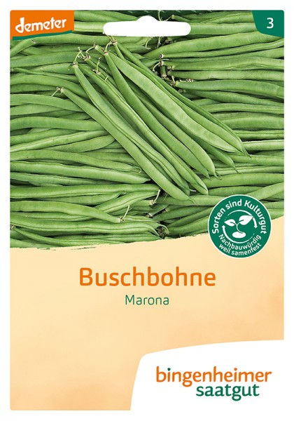 Buschbohne Marona
