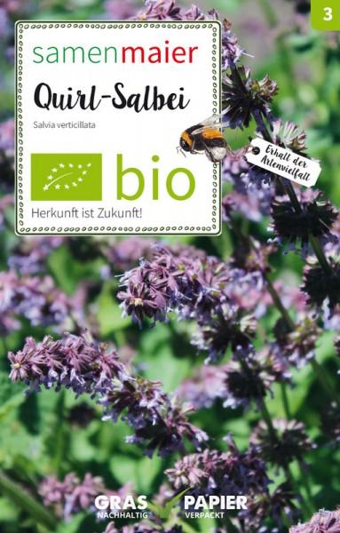 Wildblume Quirl-Salbei