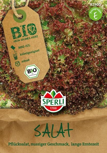 Bio-Pflücksalat rot, gekraust
