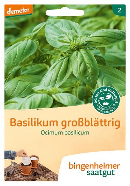 Basilikum großblättrig, 5 Saatscheiben