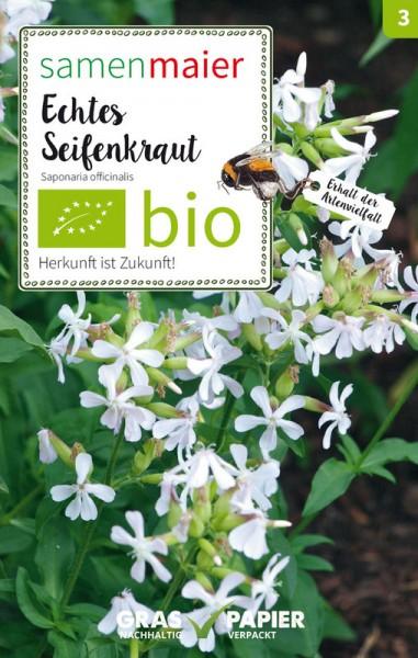 Wildblume Echtes Seifenkraut