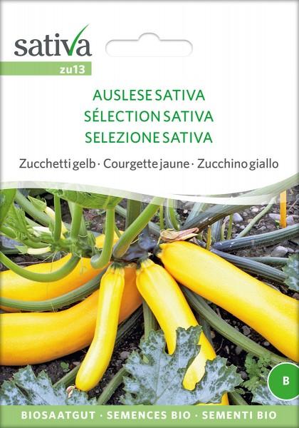 Zucchini Auslese Sativa