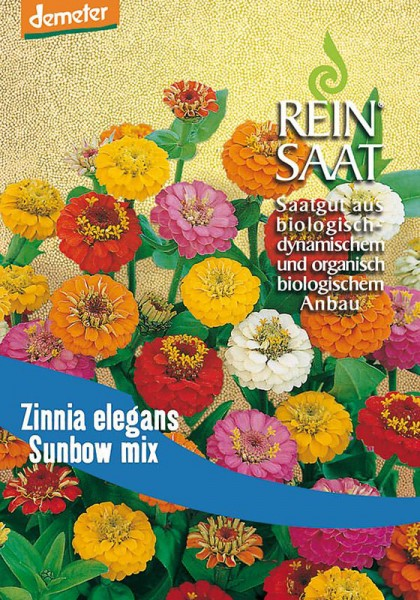 Zinnie Sunbow Mix