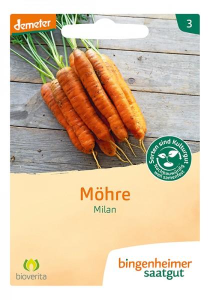 Möhre Milan