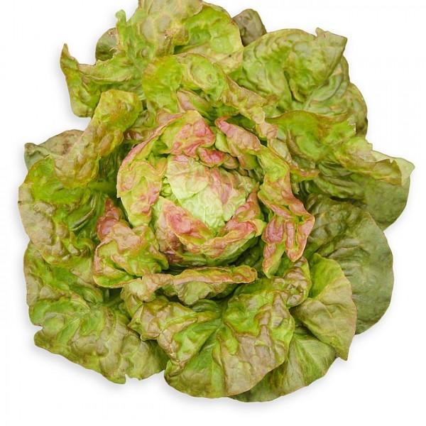 Salat `Wintermarie´