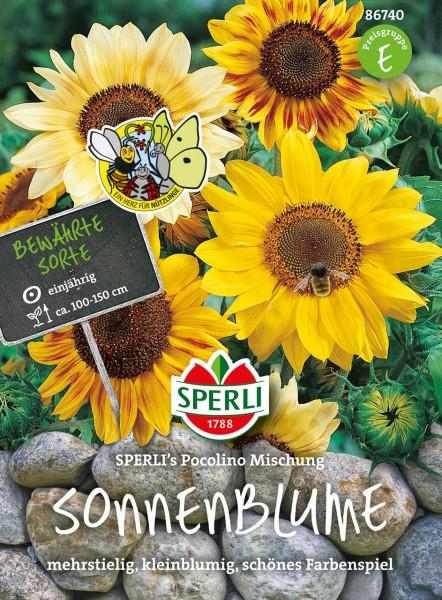 Sonnenblume SPERLI's Pocolino Mischung