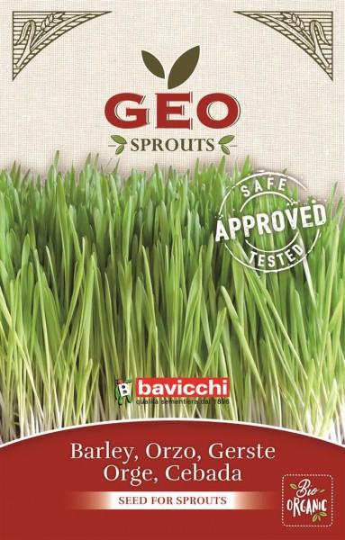 Bio-Keimsprossen Gerste