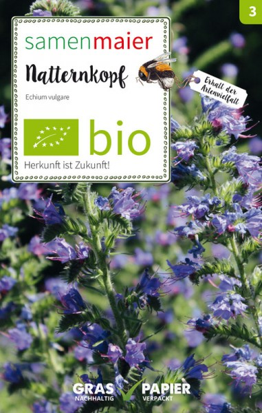 Wildblume Natternkopf