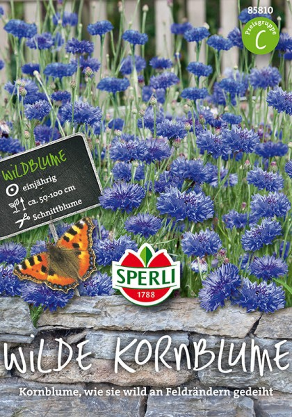 Kornblumen SPERLING´s Wilde