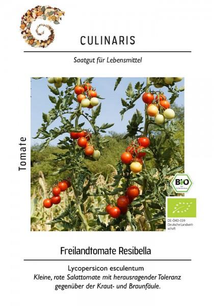 Freilandtomate Resibella