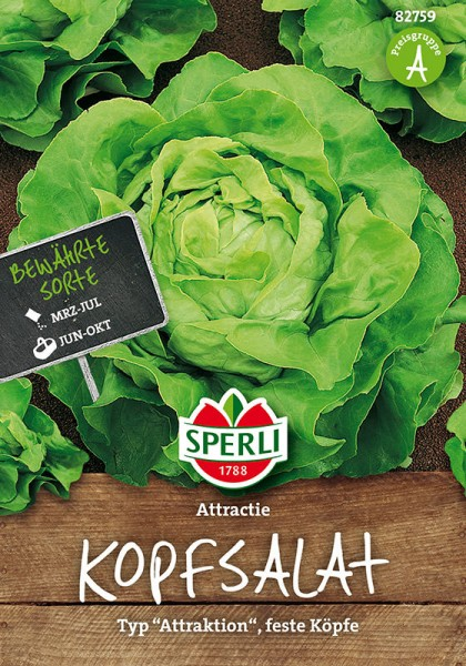 Kopfsalat Attractie