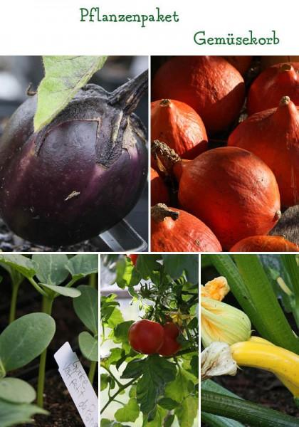Gemüsekorb - 7 Pflanzen