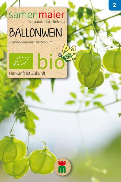 BIO Ballonwein