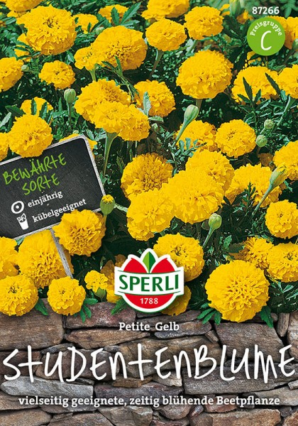 Studentenblumen Petite Gelb