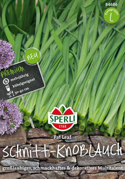Schnitt-Knoblauch Fat Leaf