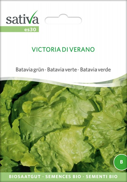 Bataviasalat Victoria di Verano
