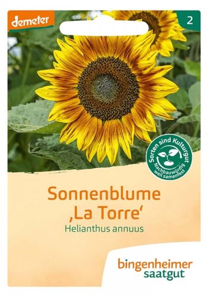 """Sonnenblume """"La Torre"""""""