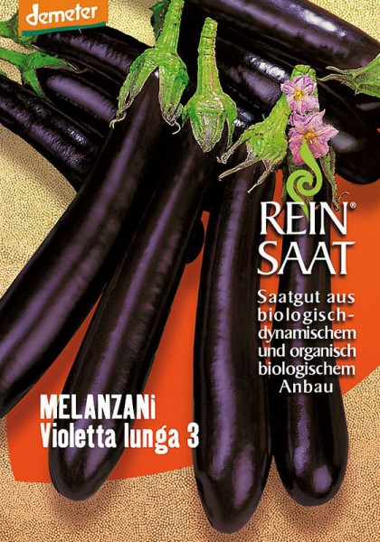 Melanzani (Aubergine) Violetta Lunga 3