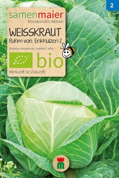 BIO Weißkraut, Ruhm von Enkhuizen 2
