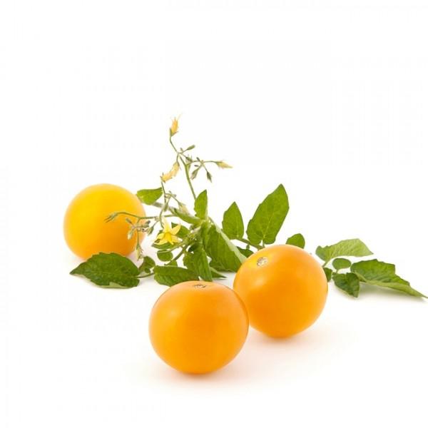Salatparadeiser / Salattomate 'Justens Gelbe'