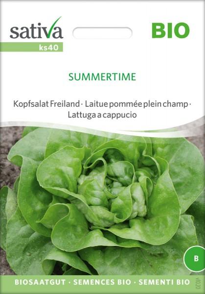 Kopfsalat Freiland Summertime