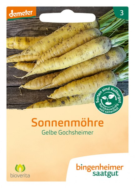 Möhre Gelbe Gochsheimer
