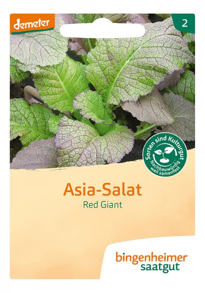 Asia - Salat Red Giant