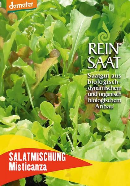 Salatmischung Misticanza (Pflücksalat)