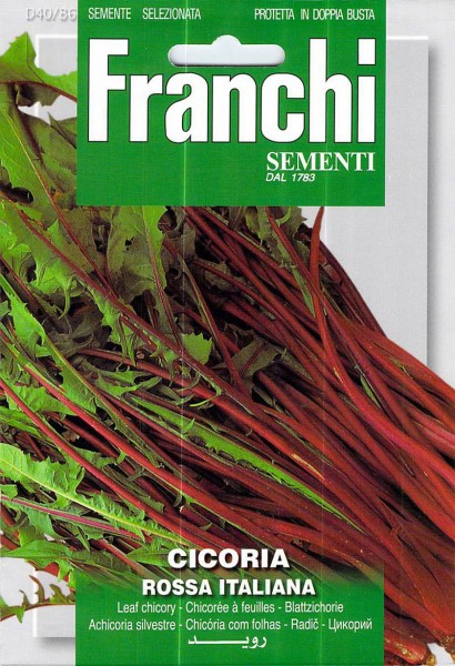 Chicoréesalat Italico A Costa Rossa