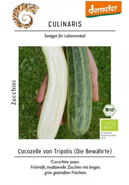 Zucchini Cocozelle von Tripolis