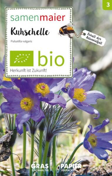 Wildblume Kuhschelle