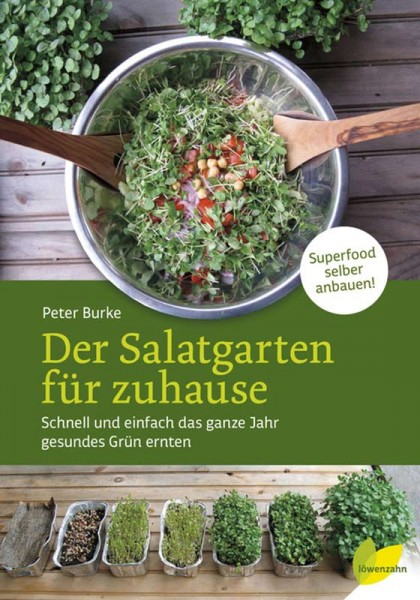 Der Salatgarten für zuhause