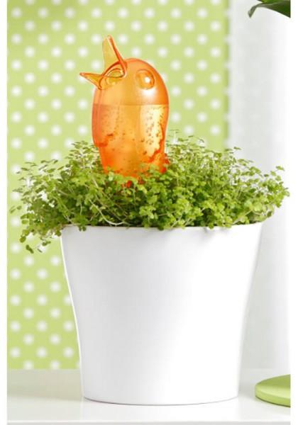 Wasserspender Bördy M (Orange)