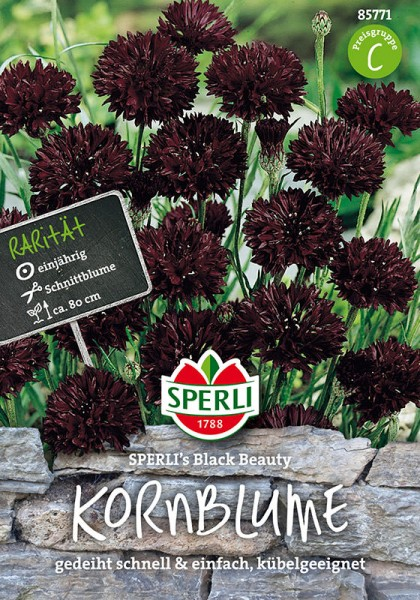Kornblumen SPERLING´s Black Beauty