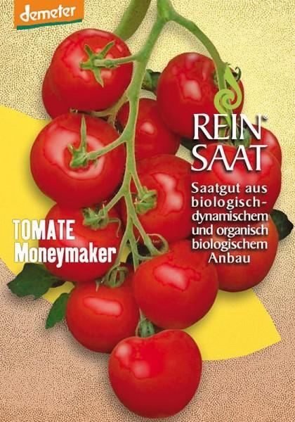 Salattomate Moneymaker