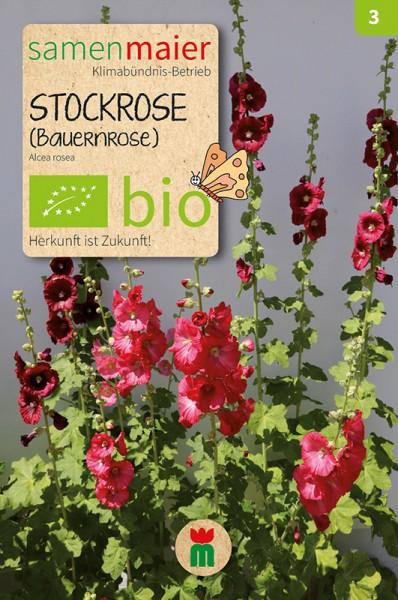 BIO Stockrose (Bauernrose), dunkelrot
