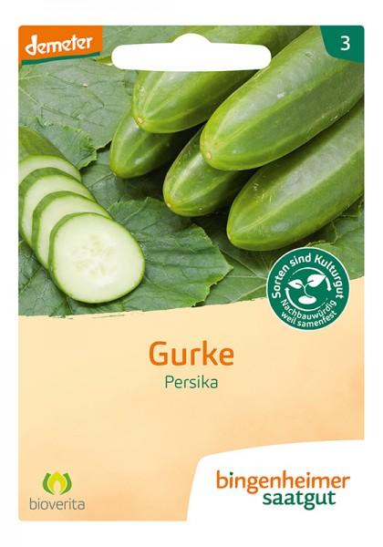 Gurke Persika