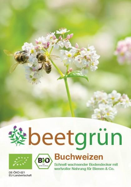 beetgrün BIO Gründünger Buchweizen