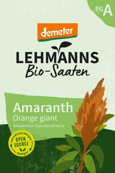 Amaranth Orange giant
