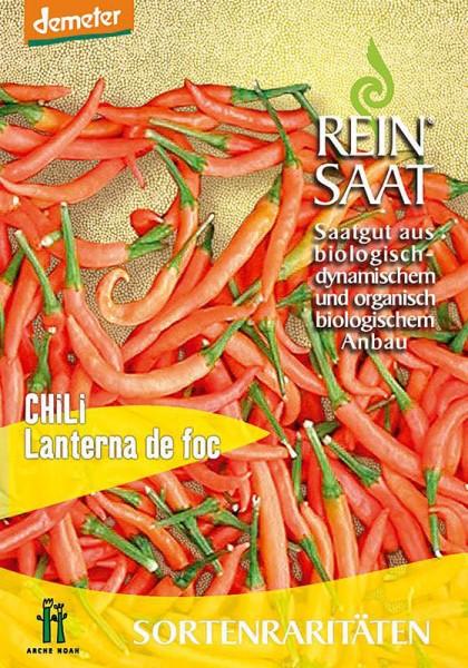 Chili Lanterna de foc